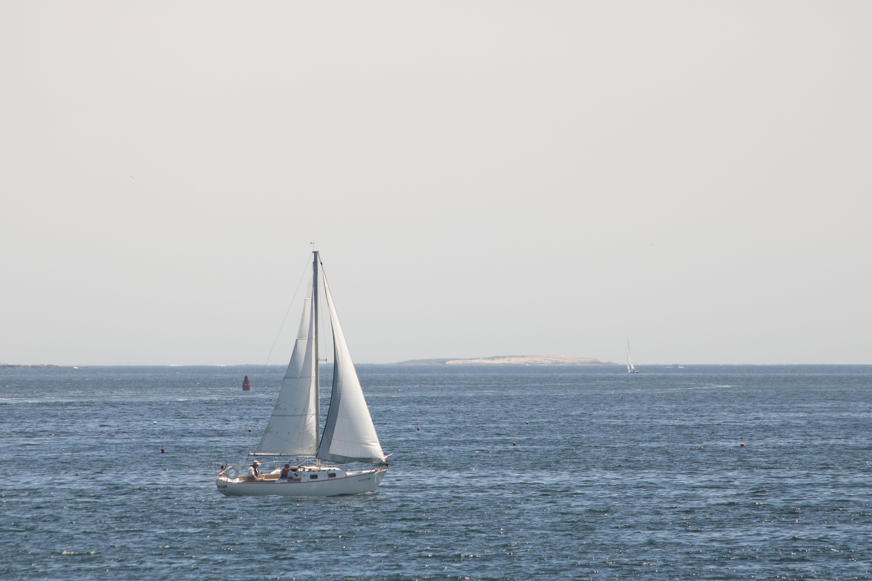 IMG_1714 first sail 10